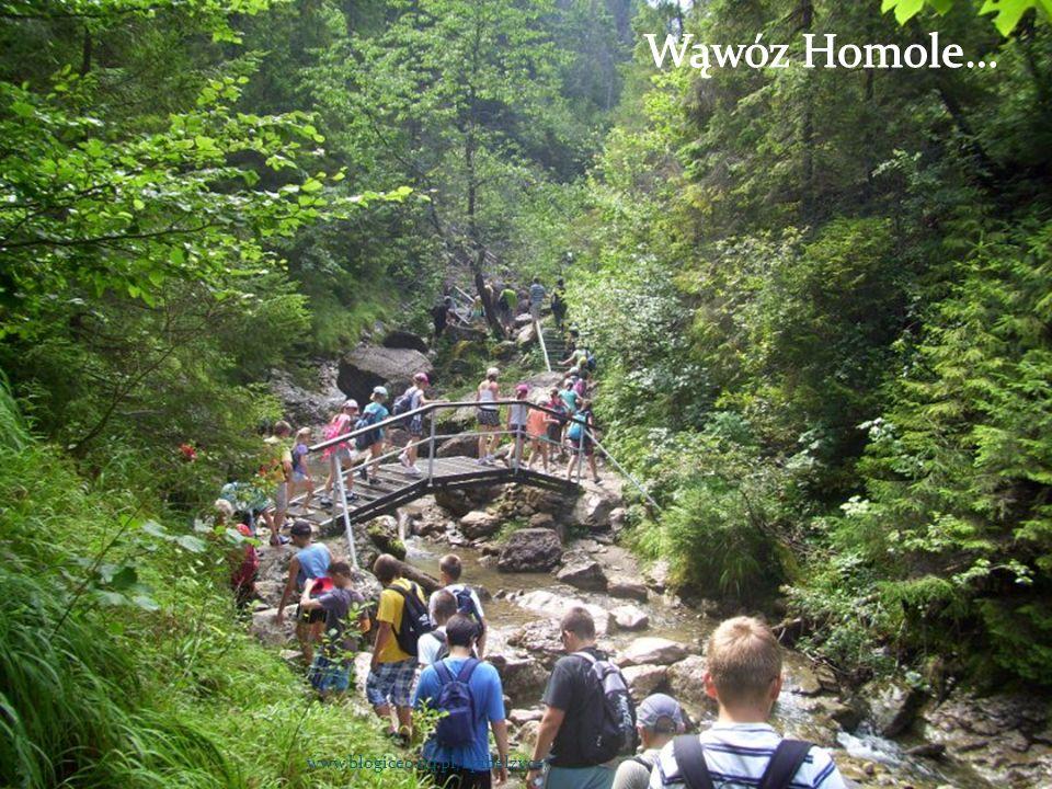 Wąwóz Homole… www.blogiceo.nq.pl/sp1belzyce/