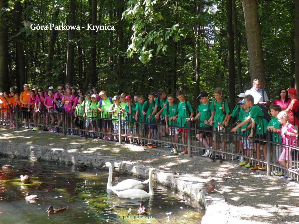 Góra Parkowa - Krynica www.blogiceo.nq.pl/sp1belzyce/