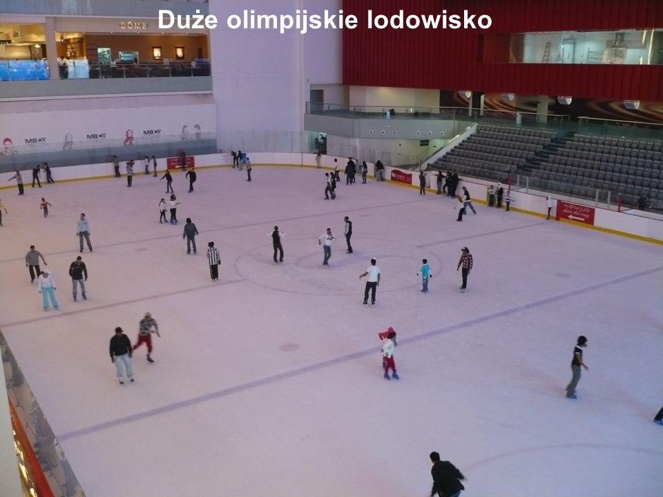 Duże olimpijskie lodowisko