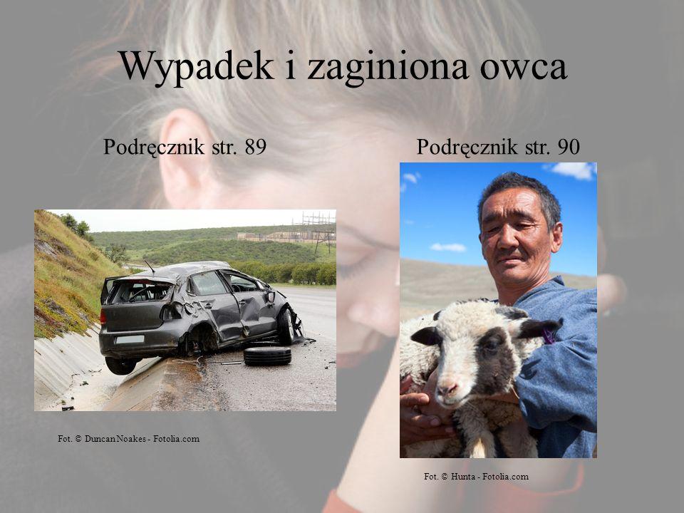 Wypadek i zaginiona owca