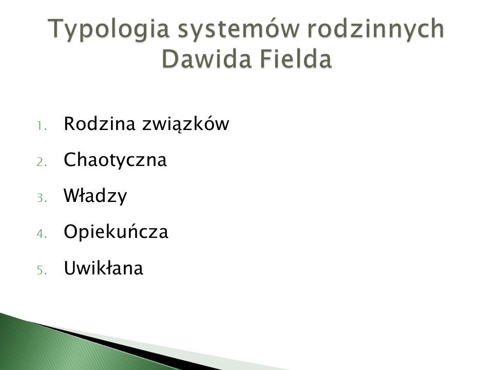 Typologia systemów rodzinnych Dawida Fielda