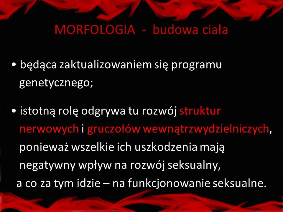 MORFOLOGIA - budowa ciała
