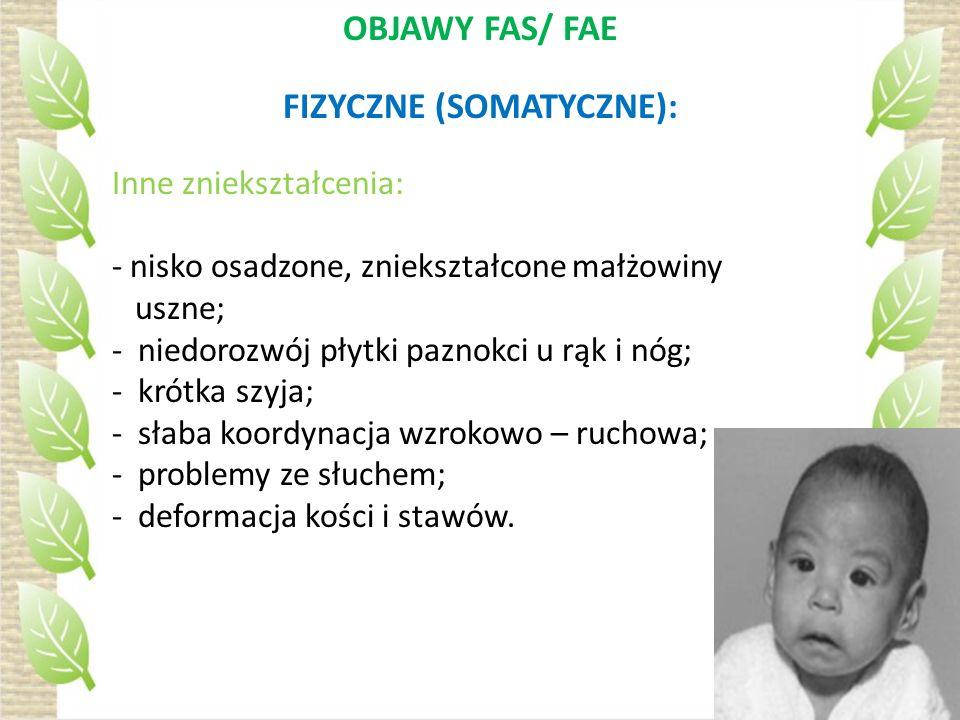 FIZYCZNE (SOMATYCZNE):