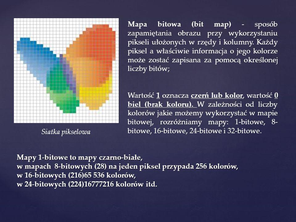 Mapa bitowa (bit map) - sposób zapamiętania obrazu przy wykorzystaniu pikseli ułożonych w rzędy i kolumny. Każdy piksel a właściwie informacja o jego kolorze może zostać zapisana za pomocą określonej liczby bitów;