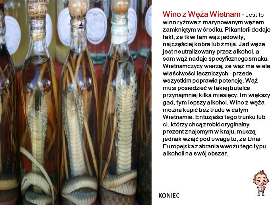 Wino z Węża Wietnam - Jest to wino ryżowe z marynowanym wężem zamkniętym w środku. Pikanterii dodaje fakt, że tkwi tam wąż jadowity, najczęściej kobra lub żmija. Jad węża jest neutralizowany przez alkohol, a sam wąż nadaje specyficznego smaku. Wietnamczycy wierzą, że wąż ma wiele właściwości leczniczych - przede wszystkim poprawia potencję. Wąż musi posiedzieć w takiej butelce przynajmniej kilka miesięcy. Im większy gad, tym lepszy alkohol. Wino z węża można kupić bez trudu w całym Wietnamie. Entuzjaści tego trunku lub ci, którzy chcą zrobić oryginalny prezent znajomym w kraju, muszą jednak wziąć pod uwagę to, że Unia Europejska zabrania wwozu tego typu alkoholi na swój obszar.