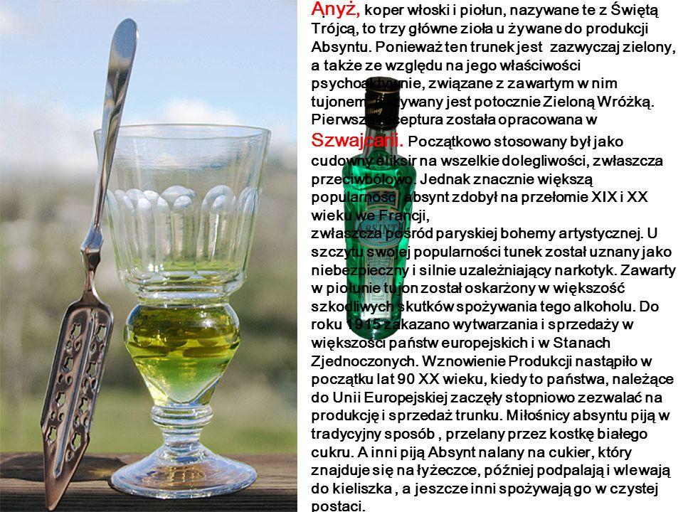 Anyż, koper włoski i piołun, nazywane te z Świętą Trójcą, to trzy główne zioła u żywane do produkcji Absyntu. Ponieważ ten trunek jest zazwyczaj zielony, a także ze względu na jego właściwości psychoaktywnie, związane z zawartym w nim tujonem, nazywany jest potocznie Zieloną Wróżką. Pierwsza receptura została opracowana w Szwajcarii. Początkowo stosowany był jako cudowny eliksir na wszelkie dolegliwości, zwłaszcza przeciwbólowo. Jednak znacznie większą popularność absynt zdobył na przełomie XIX i XX wieku we Francji,