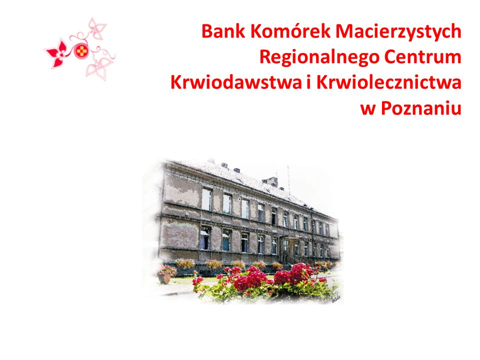 Bank Komórek Macierzystych Regionalnego Centrum Krwiodawstwa i Krwiolecznictwa w Poznaniu