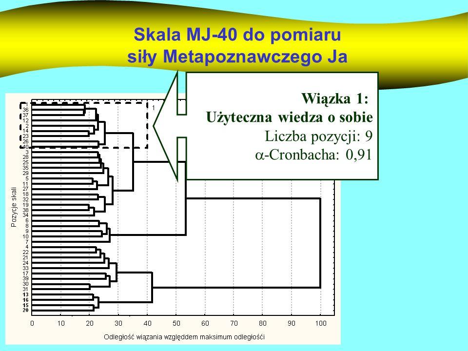 Skala MJ-40 do pomiaru siły Metapoznawczego Ja