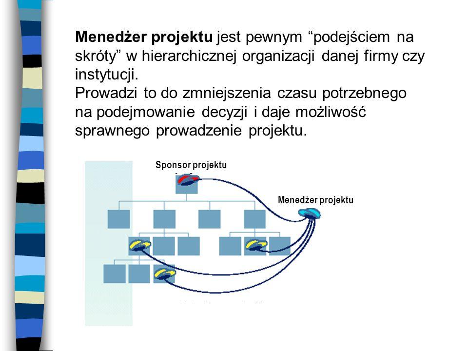 Menedżer projektu jest pewnym podejściem na skróty w hierarchicznej organizacji danej firmy czy instytucji.