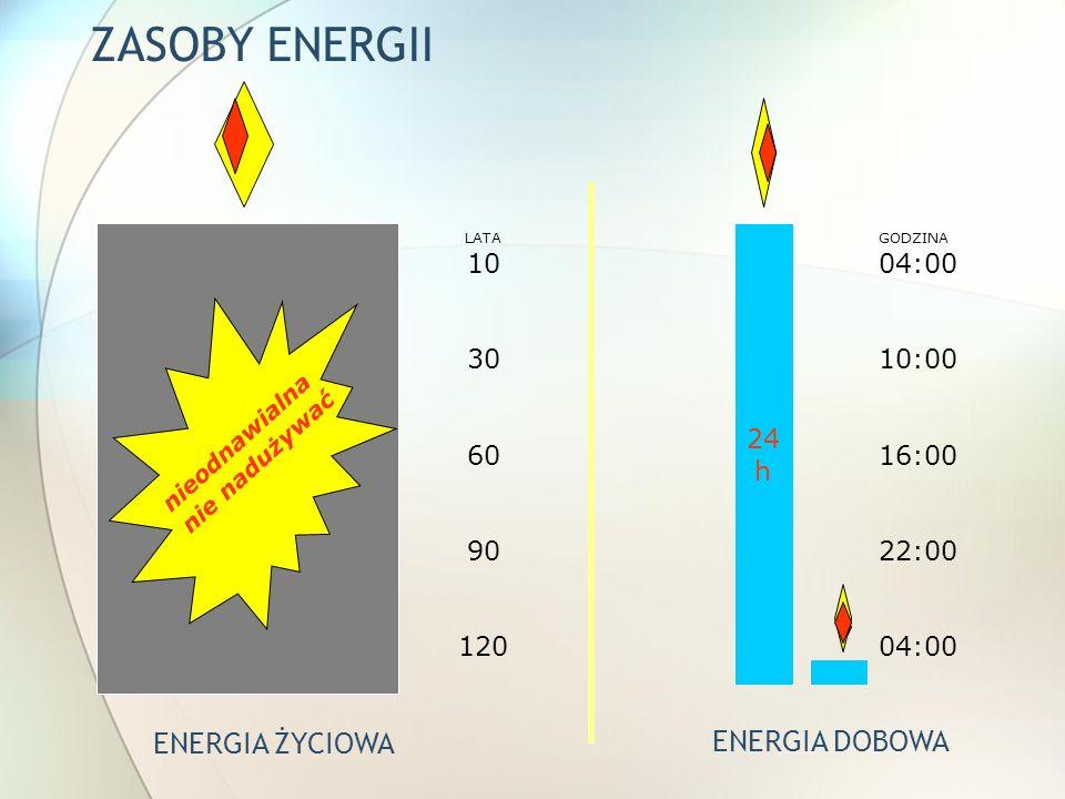 ZASOBY ENERGII ENERGIA ŻYCIOWA ENERGIA DOBOWA 10 30 60 90 120 24 h