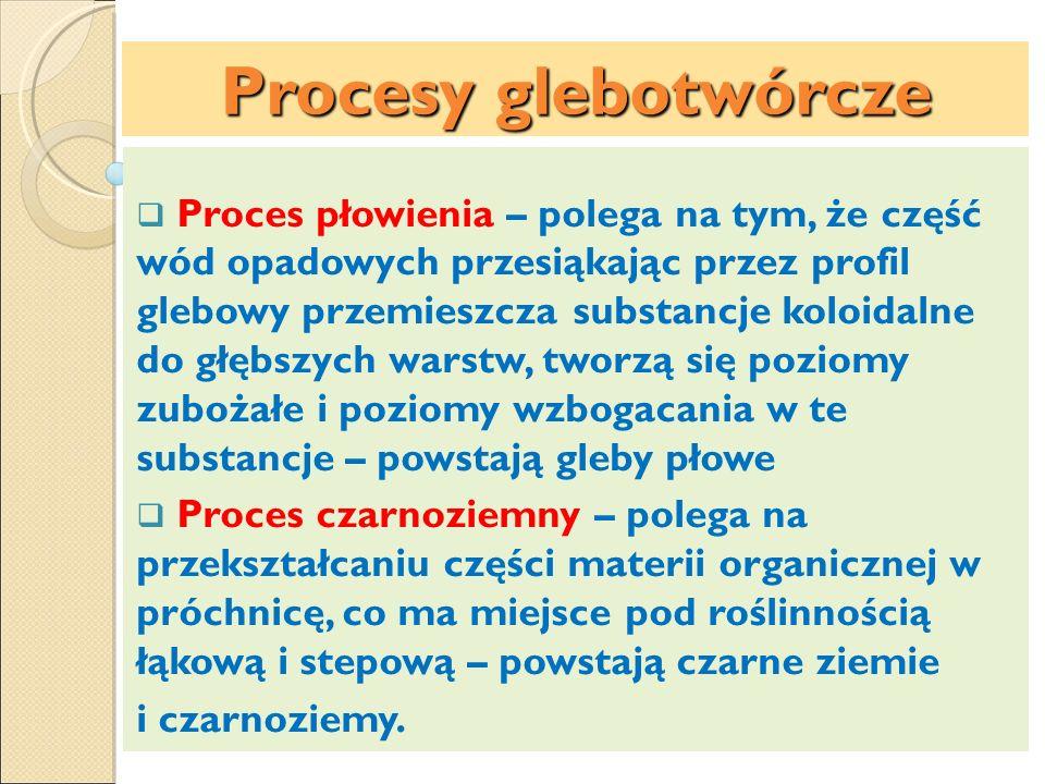Procesy glebotwórcze
