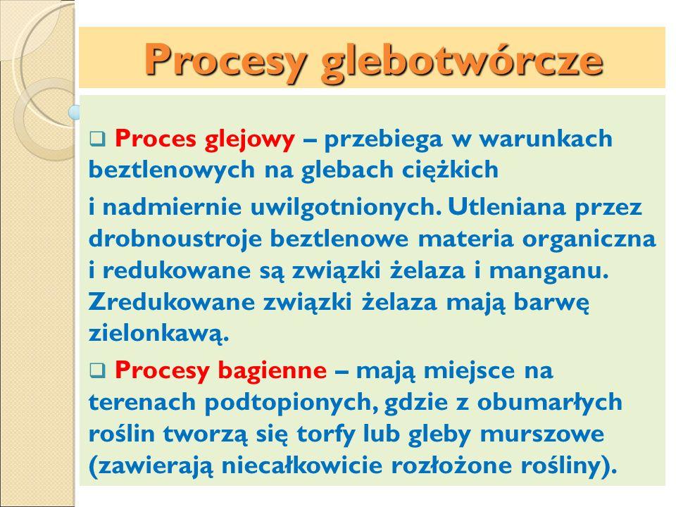 Procesy glebotwórcze Proces glejowy – przebiega w warunkach beztlenowych na glebach ciężkich.