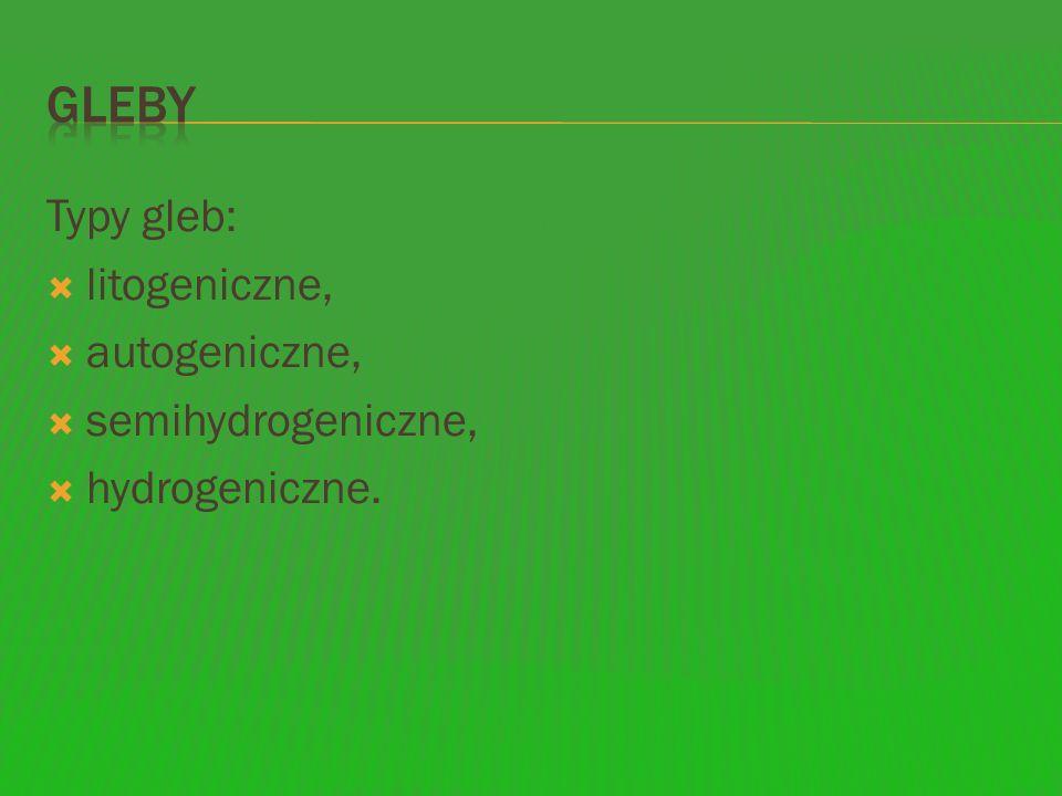 Gleby Typy gleb: litogeniczne, autogeniczne, semihydrogeniczne,