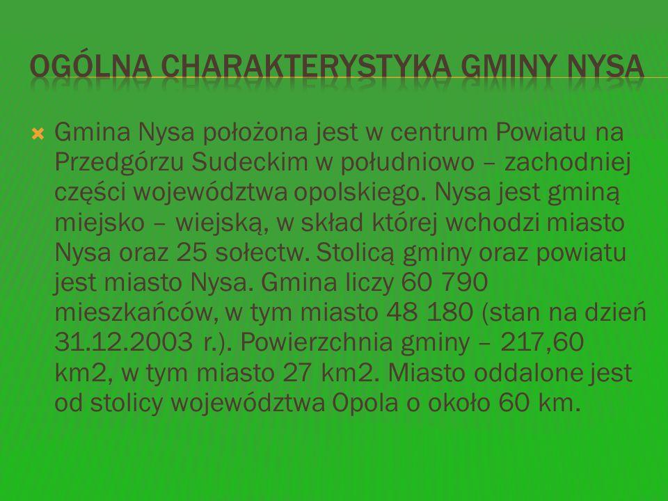 Ogólna charakterystyka gminy Nysa