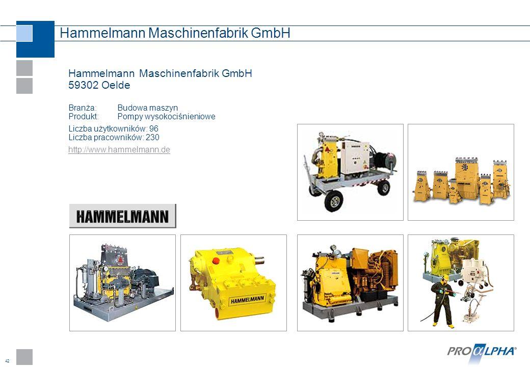 Hammelmann Maschinenfabrik GmbH