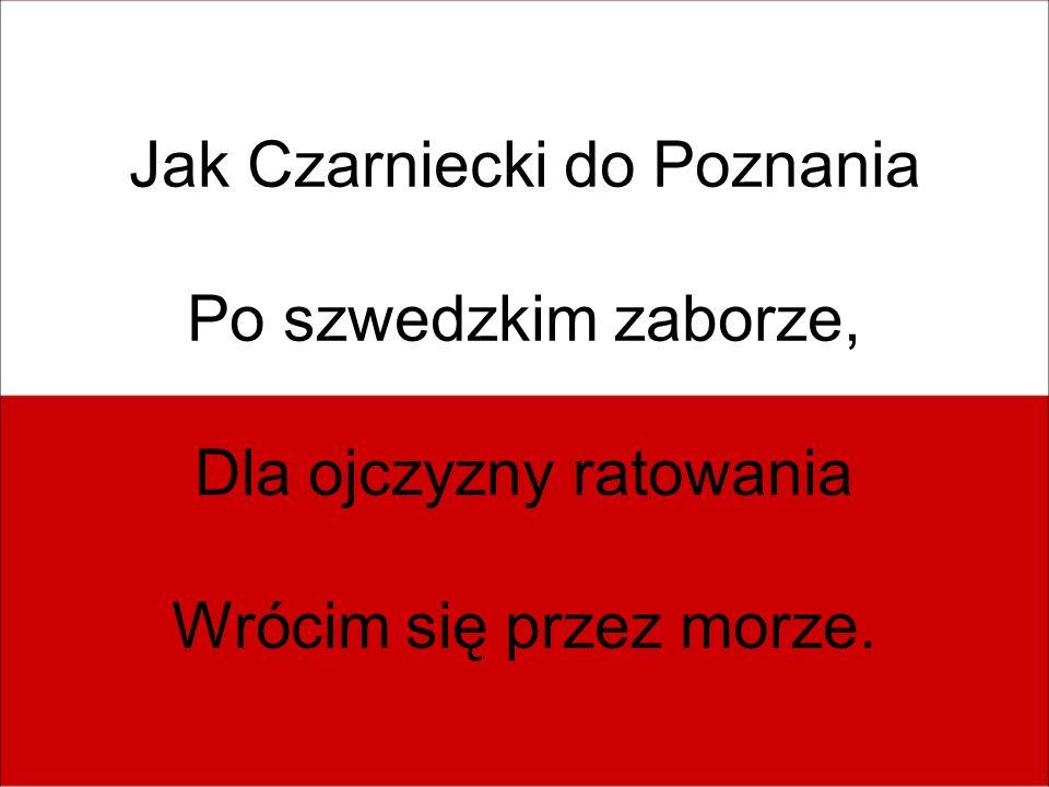 Jak Czarniecki do Poznania Po szwedzkim zaborze,
