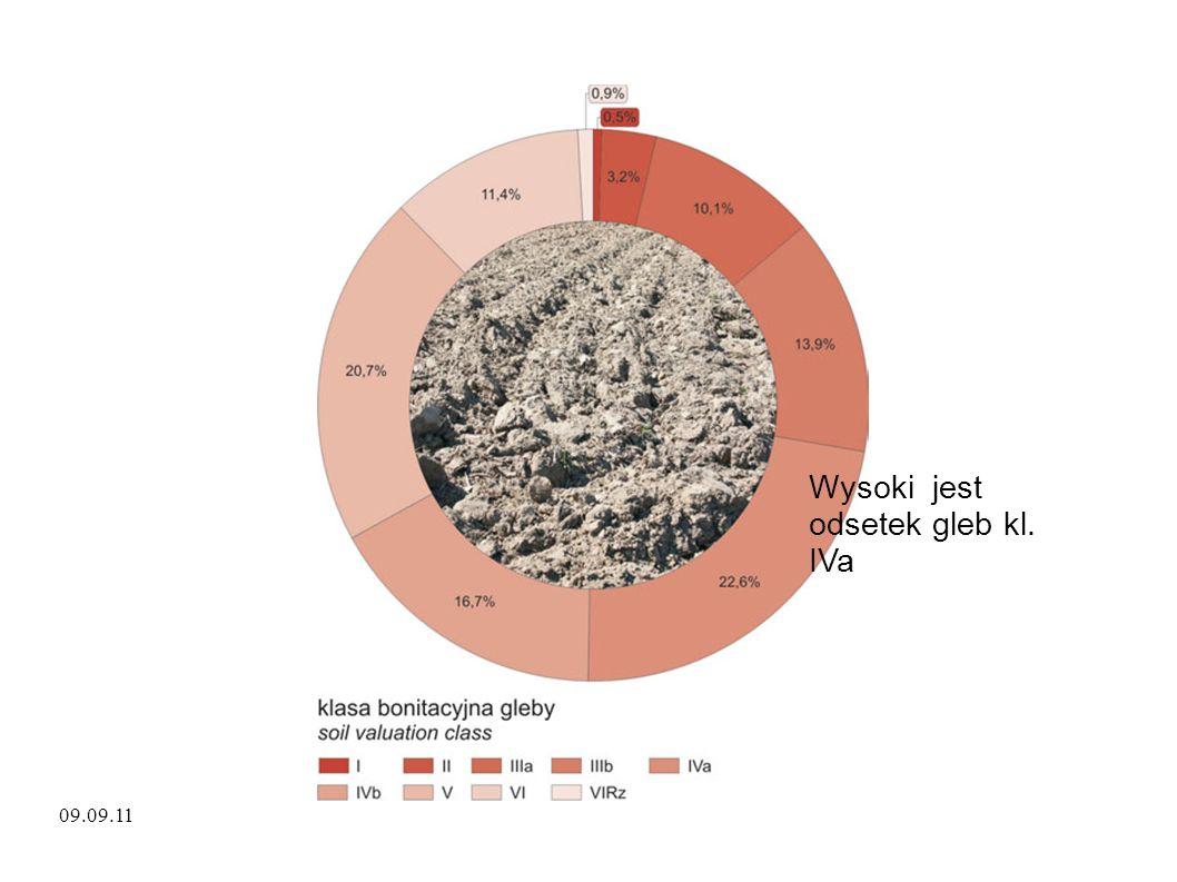 Wysoki jest odsetek gleb kl. IVa