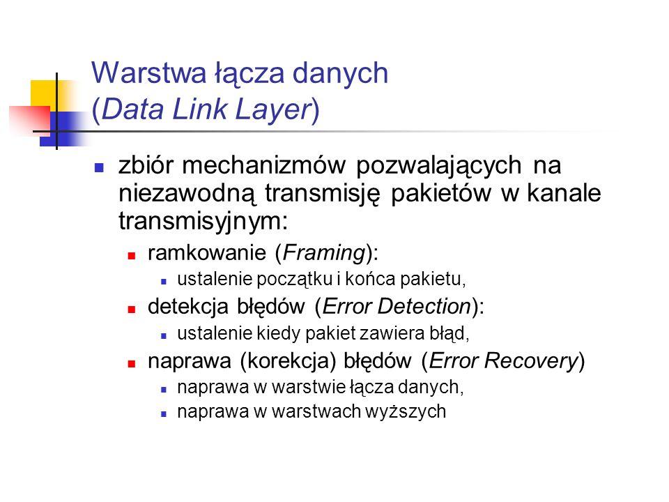 Warstwa łącza danych (Data Link Layer)