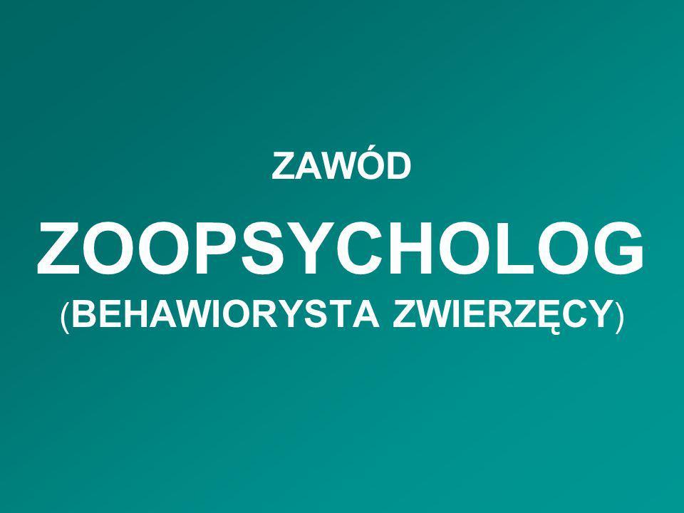 ZOOPSYCHOLOG (BEHAWIORYSTA ZWIERZĘCY)