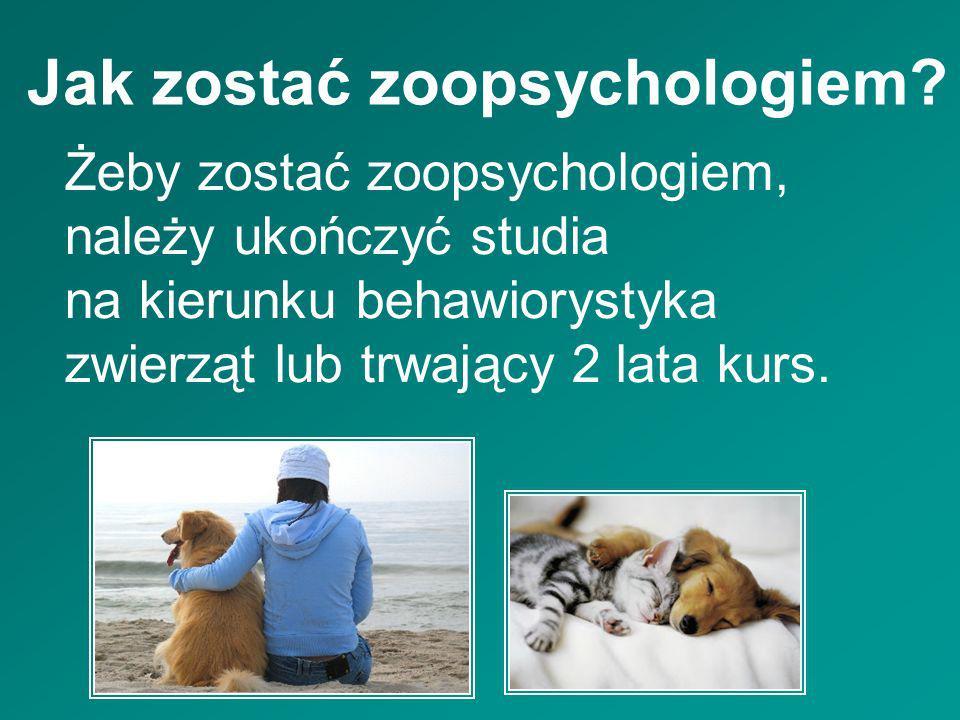Jak zostać zoopsychologiem