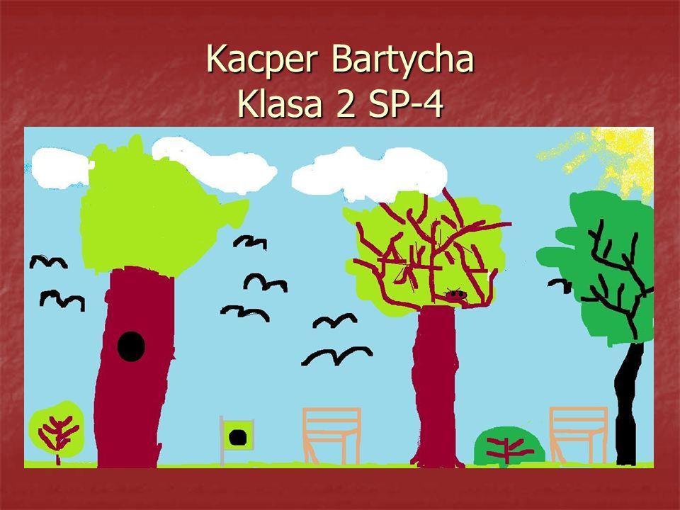 Kacper Bartycha Klasa 2 SP-4