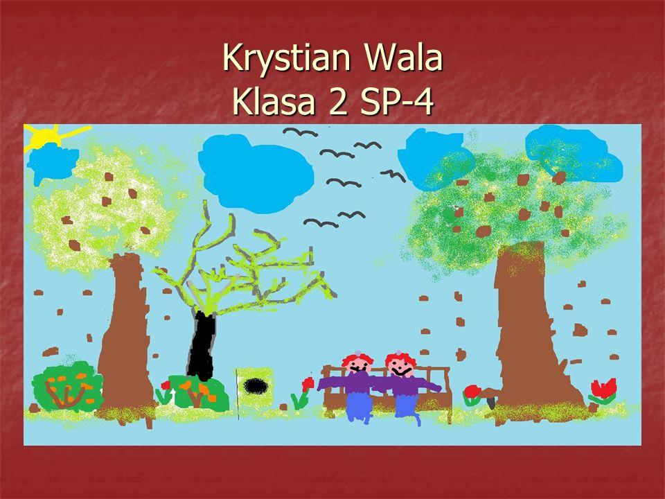 Krystian Wala Klasa 2 SP-4