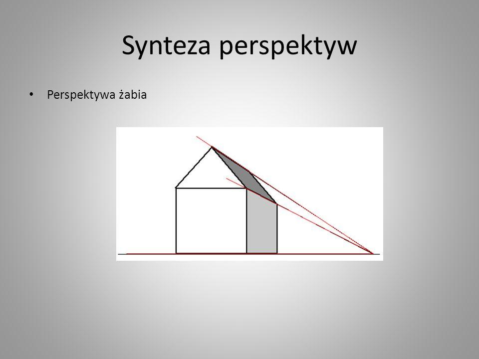 Synteza perspektyw Perspektywa żabia