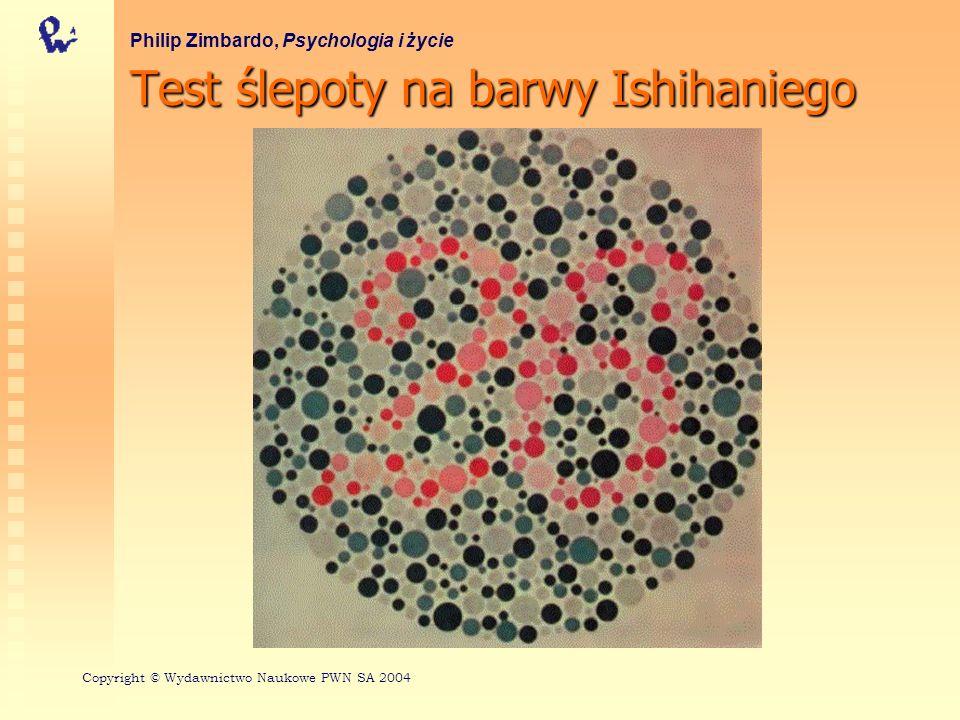 Test ślepoty na barwy Ishihaniego