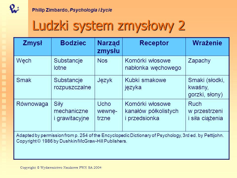 Ludzki system zmysłowy 2
