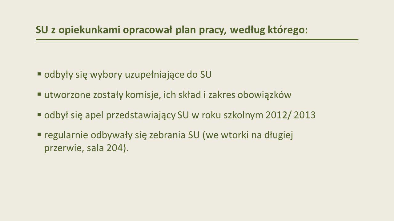SU z opiekunkami opracował plan pracy, według którego: