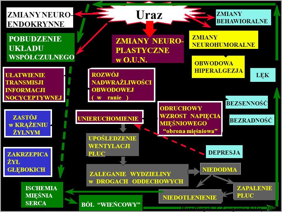 Uraz Wordliczek J. Leczenie bólu, 2007 ZMIANY NEURO- ENDOKRYNNE