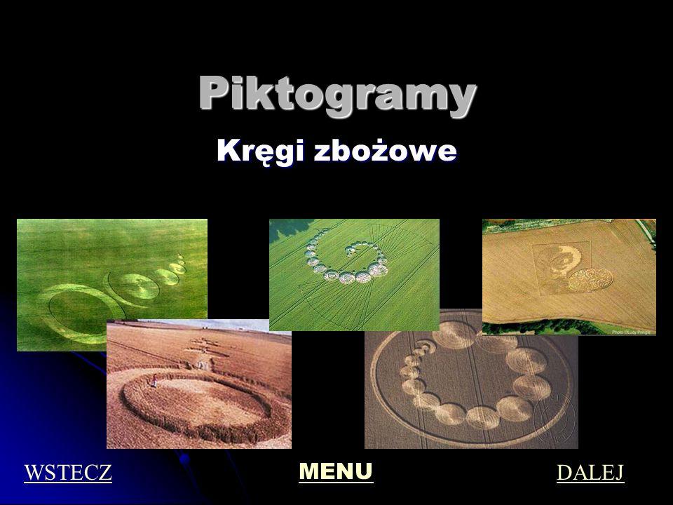 Piktogramy Kręgi zbożowe WSTECZ MENU DALEJ