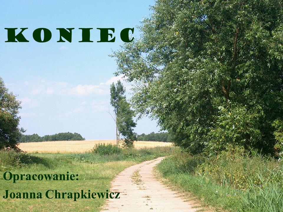Koniec Opracowanie: Joanna Chrapkiewicz
