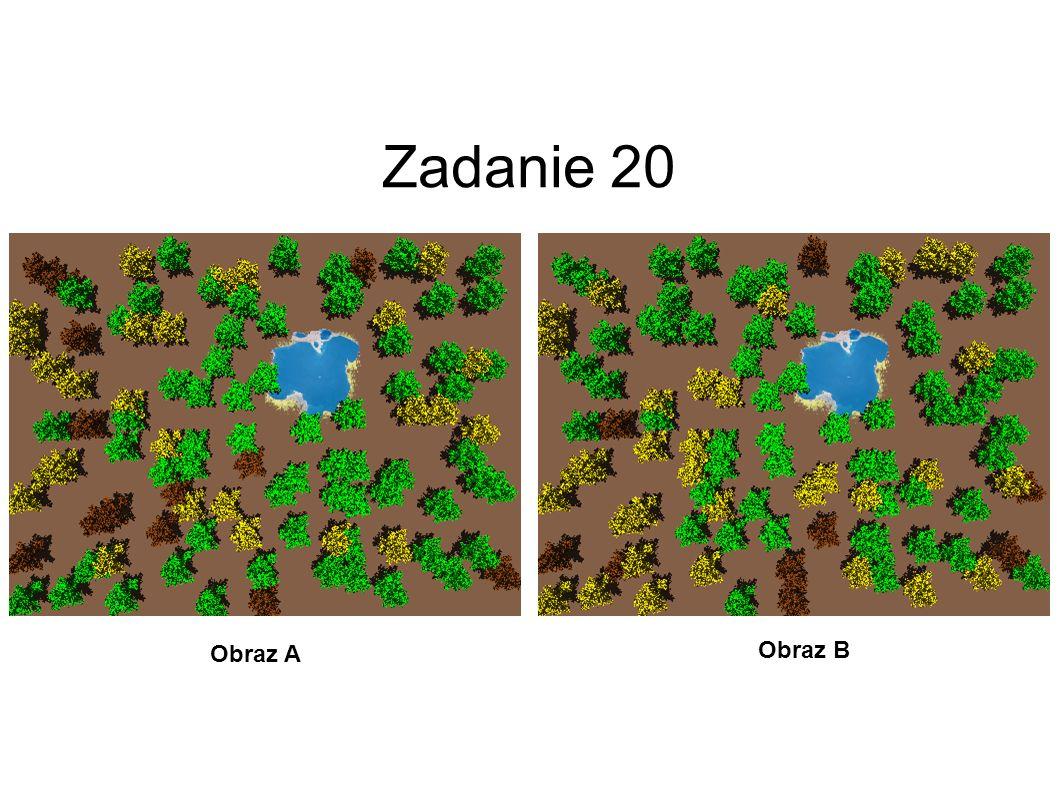Zadanie 20 Obraz A Obraz B 21