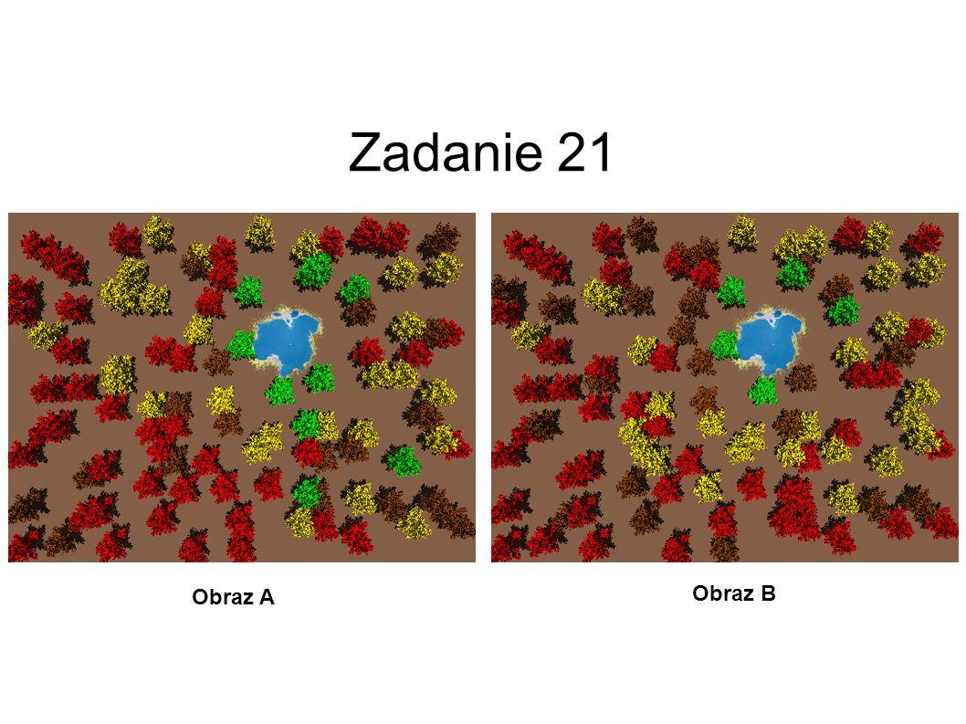 Zadanie 21 Obraz A Obraz B 22