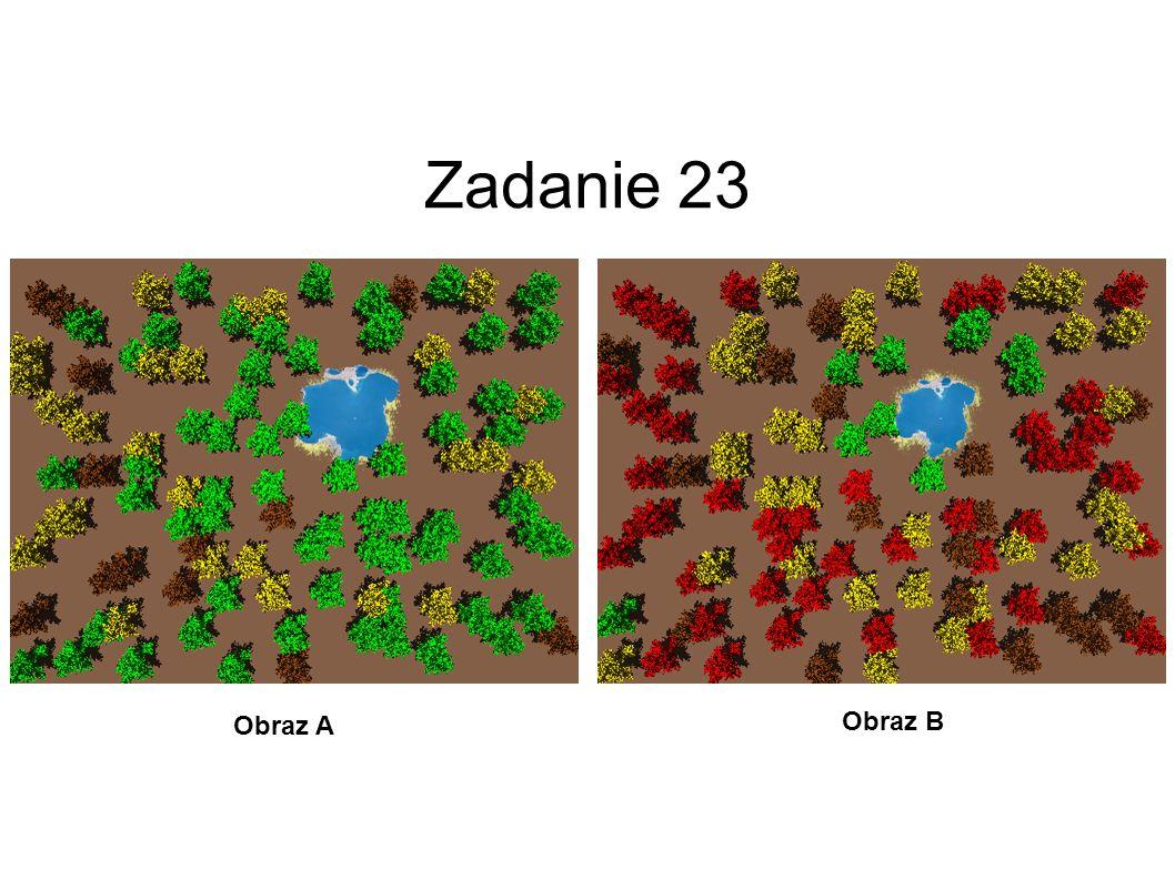 Zadanie 23 Obraz A Obraz B 24