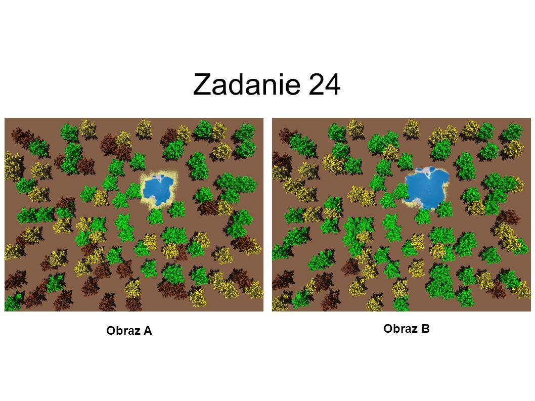 Zadanie 24 Obraz A Obraz B 25
