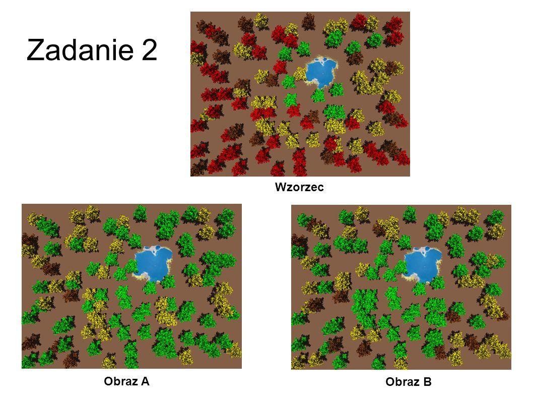 Zadanie 2 Wzorzec Obraz A Obraz B 29