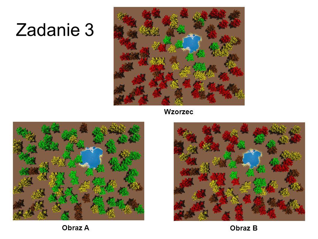 Zadanie 3 Wzorzec Obraz A Obraz B 30