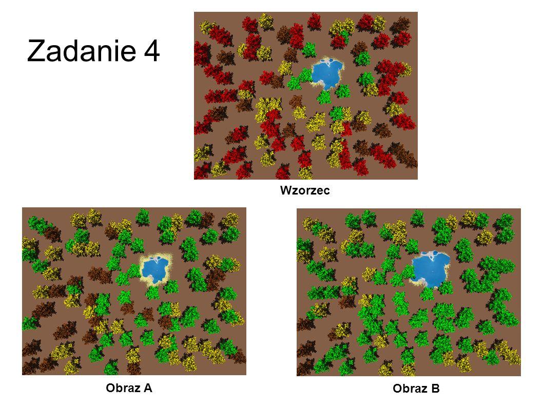Zadanie 4 Wzorzec Obraz A Obraz B 31