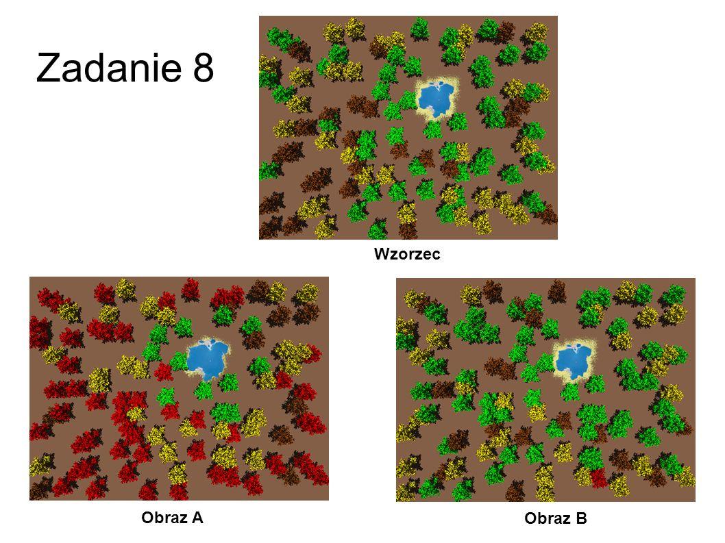 Zadanie 8 Wzorzec Obraz A Obraz B 35