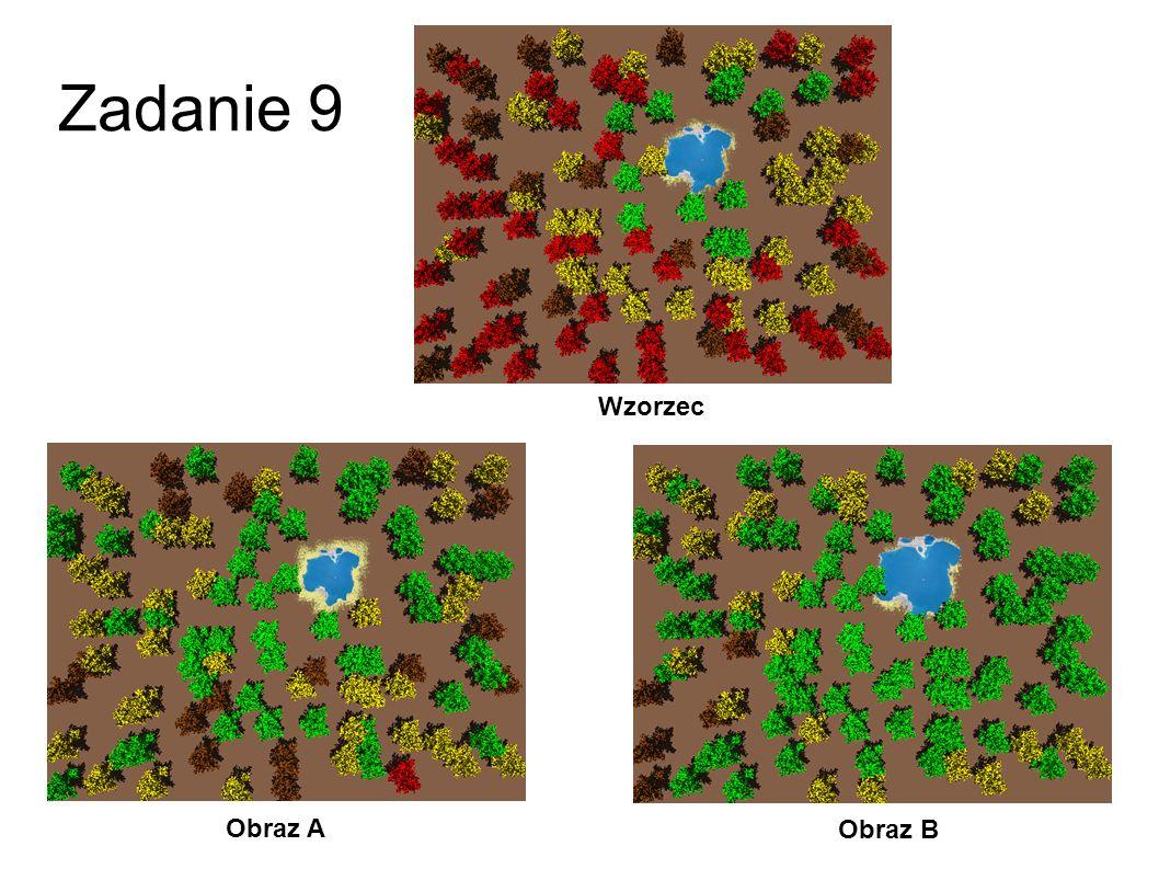 Zadanie 9 Wzorzec Obraz A Obraz B 36
