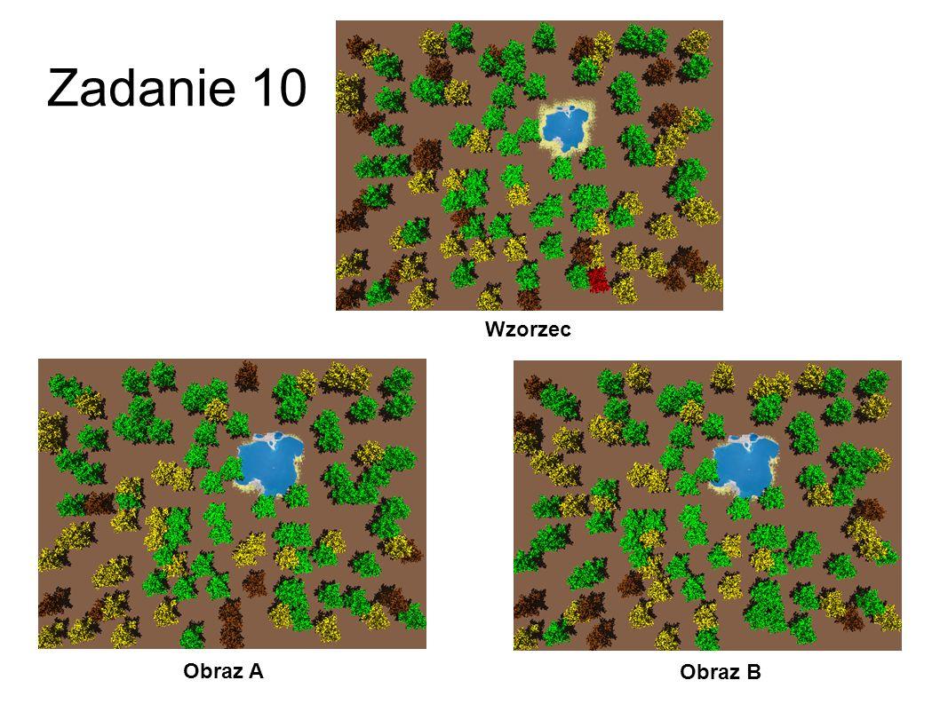 Zadanie 10 Wzorzec Obraz A Obraz B 37