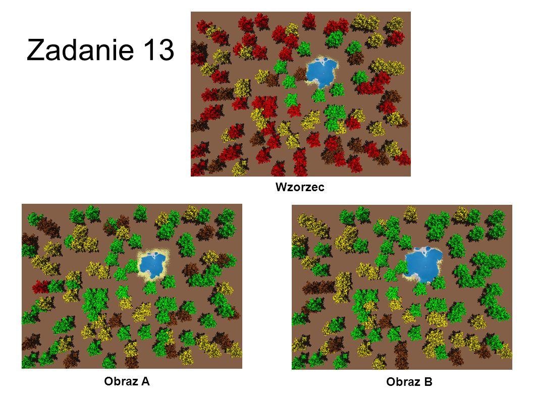 Zadanie 13 Wzorzec Obraz A Obraz B 40