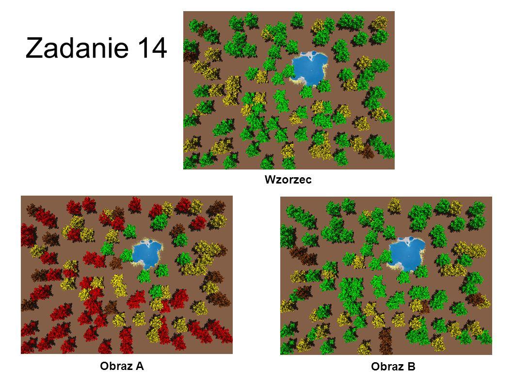 Zadanie 14 Wzorzec Obraz A Obraz B 41