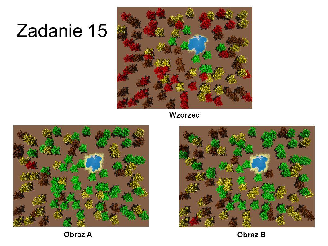 Zadanie 15 Wzorzec Obraz A Obraz B 42