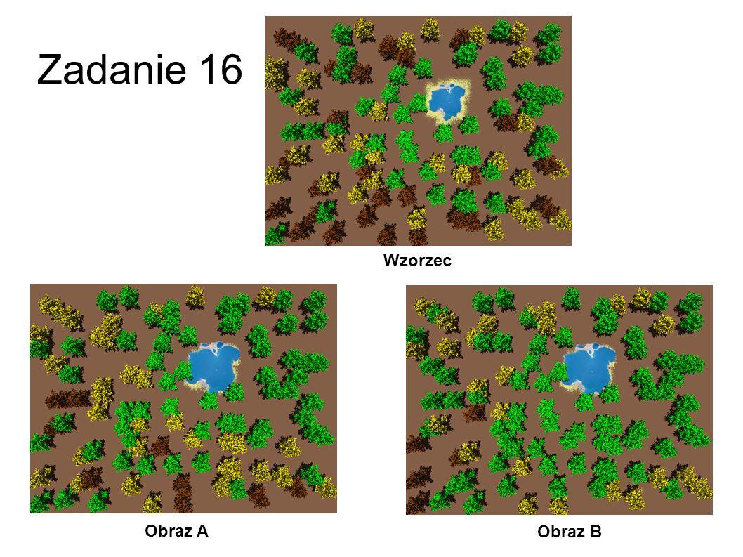 Zadanie 16 Wzorzec Obraz A Obraz B 43