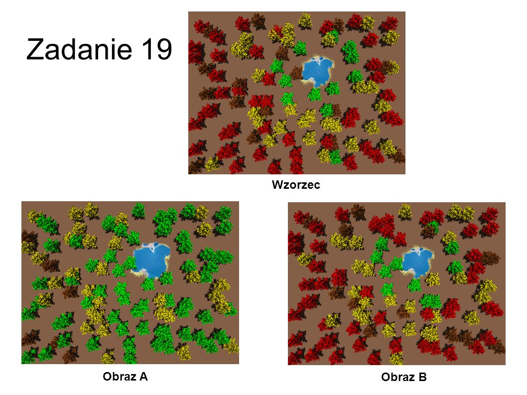 Zadanie 19 Wzorzec Obraz A Obraz B 46