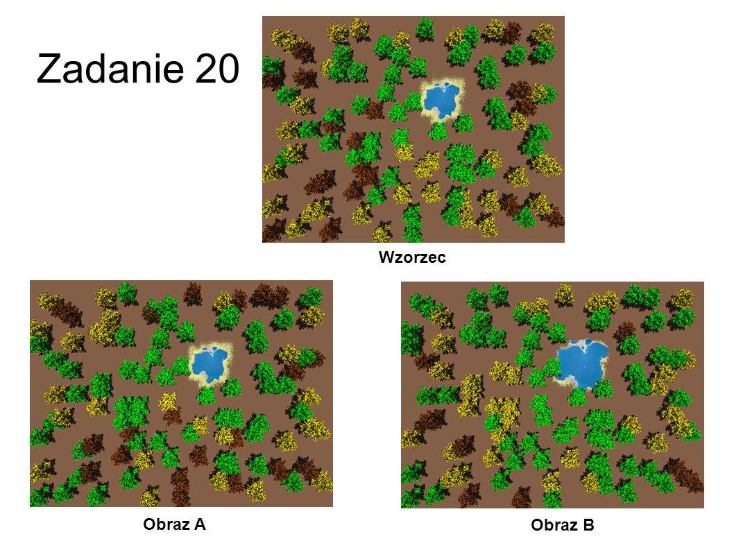 Zadanie 20 Wzorzec Obraz A Obraz B 47