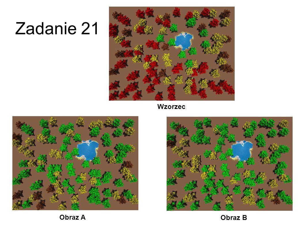 Zadanie 21 Wzorzec Obraz A Obraz B 48